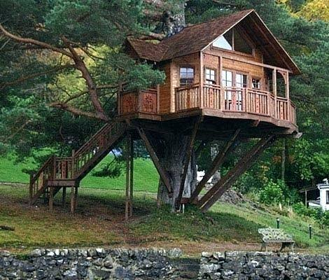 tree houses designs and tree house