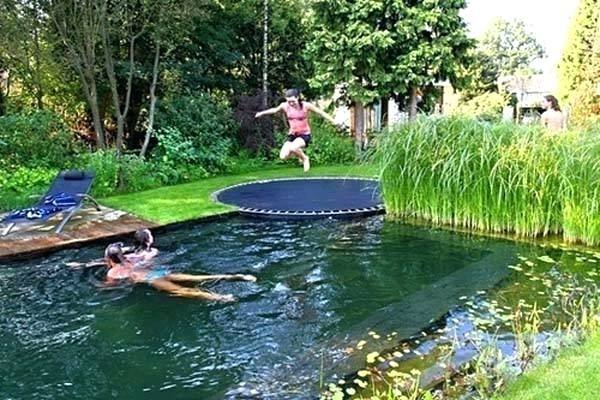 natural swimming pool designs delectable natural swimming pools photography  and wall ideas decorating ideas fresh on