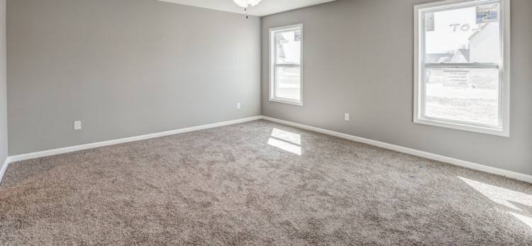Some advantages of choosing carpet over other types of flooring are, carpets  don't scratch or