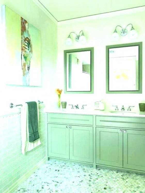 Pink Bathroom Decor Ideas Pictures Tips From And Brown Green