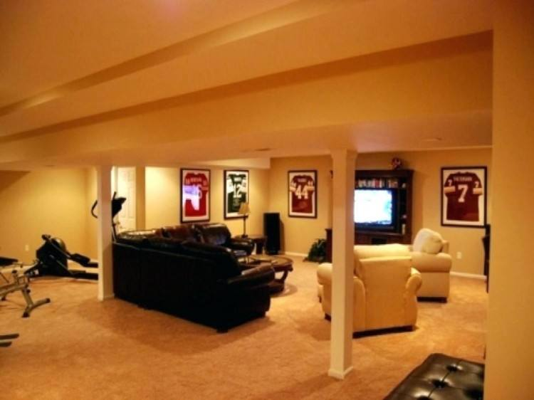 love the couch! small basement ideas pictures