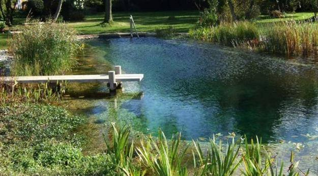 best backyard pool designs backyard landscapes with above ground pools best  superb s pool design ideas