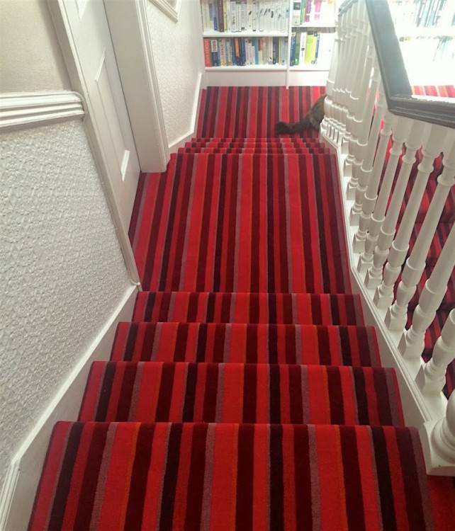 type of carpet for stairs foyer with staircase carpeting best type of carpet  for high traffic