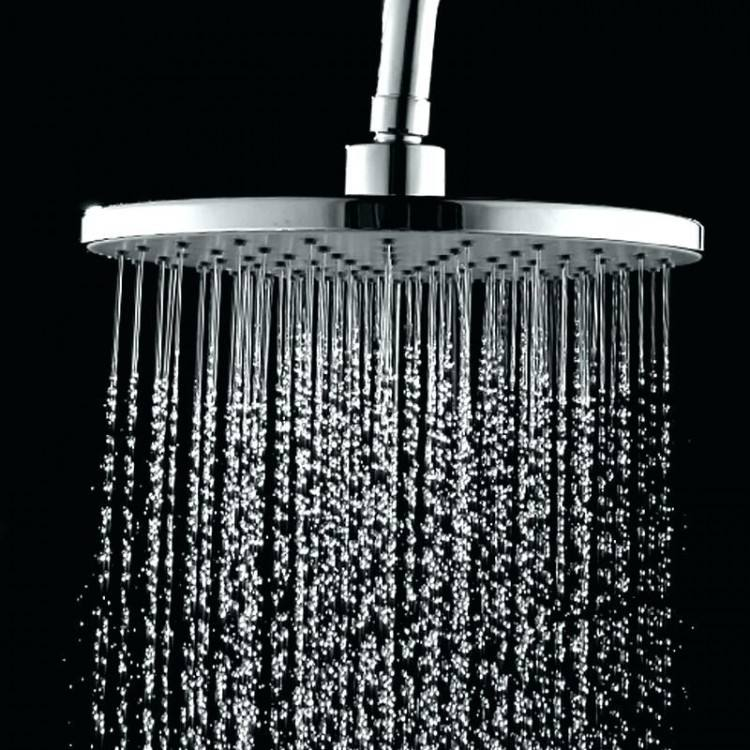 Reece stainless steel Sussex Monsoon outdoor shower