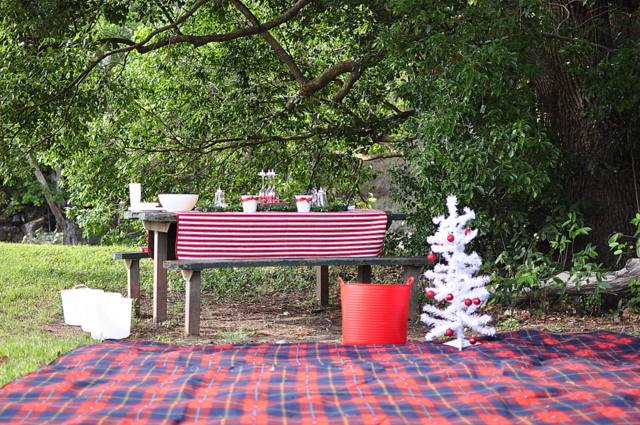 christmas bbq party ideas