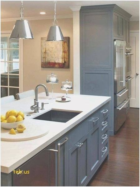 Ikea Kitchen Decor Ideas Shelving Solutions Drawer Door Pantry in Ikea  Kitchen Storage Cabinets